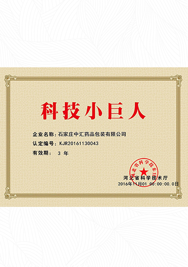 Certificate of technology giant